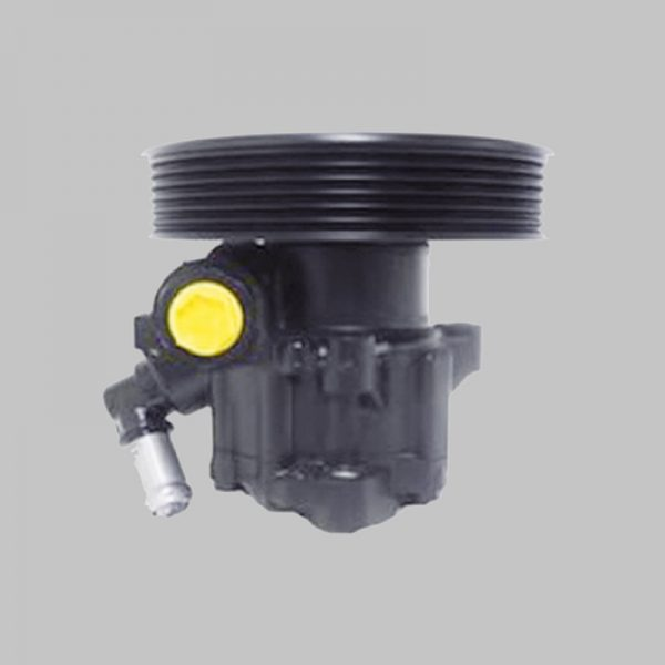power steering pump for Nissan Cabstar - 491109X400